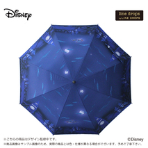 Disneyキャンバスパラソル ピーターパン/夜の空